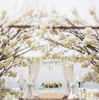Rancang Hari Bahagia dengan Dekorasi Pernikahan dari Steve's Décor