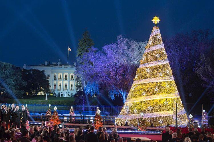 Donald Trump Menyambut Musim Liburan Akhir Tahun dengan Tradisi Christmas Tree Lighting
