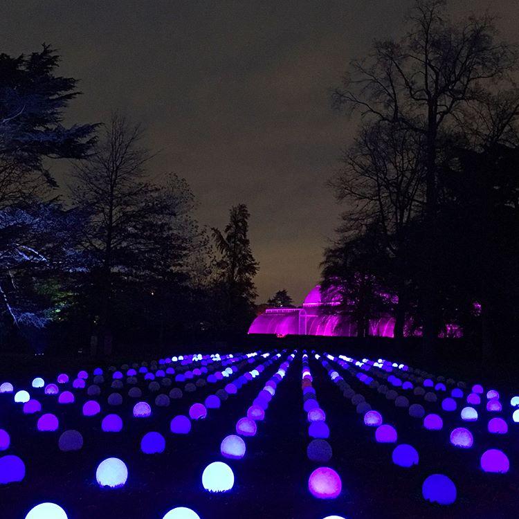 Saksikan Keindahan Lampu-lampu Natal di Kew Gardens, London