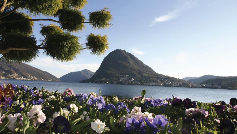 Tips Perjalanan Mata Tanpa Kedip di Lugano, Swiss